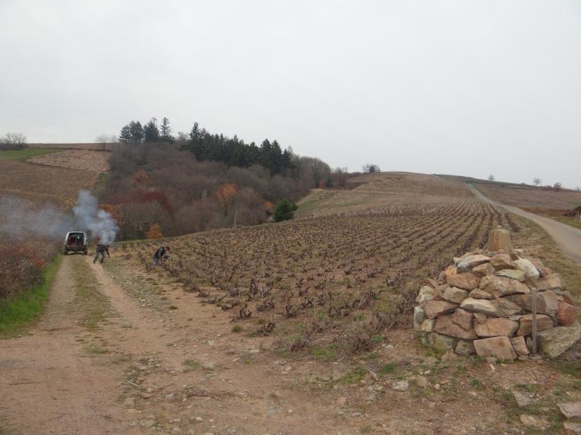 plateau de Grille Midi